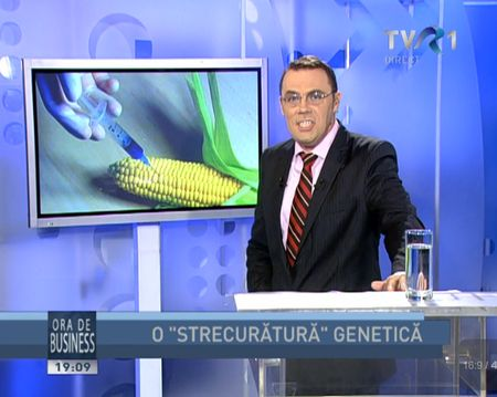 plante-modificate-genetic