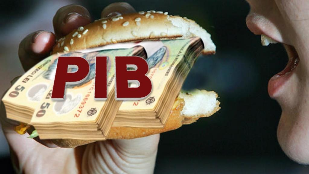 pib blog 1